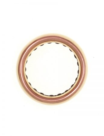Ball Track Ring - Ceramic Bearings