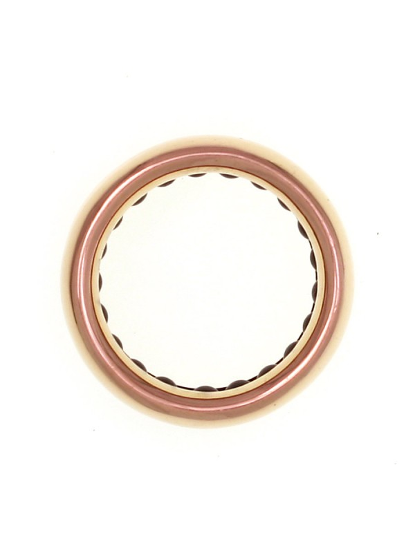Ball Track Ring – Ceramic Bearings