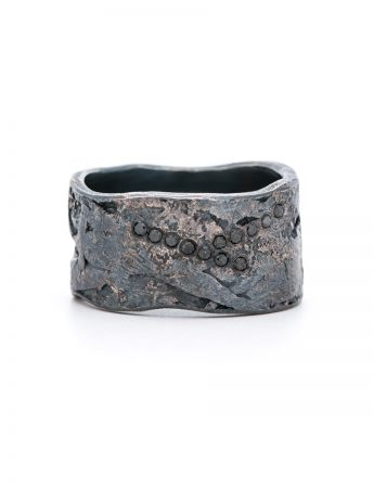 Black Diamond Ring - Silver and Palladium