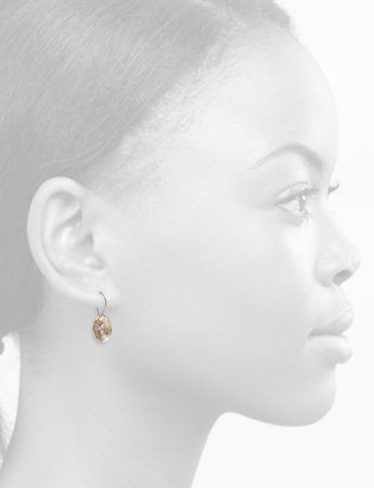 Celestial Terrain Rounded Hook Earrings – Gold with Diamonds